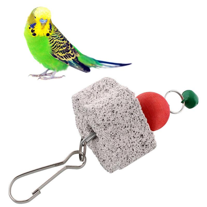 Parakeet Chew Toys : Bird squirel chew bite scratcher bell toy teeth grinding