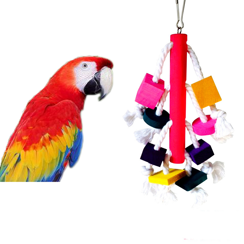 Bird Toys For Birds : Colorful parrot macaw chew toys pet birds conure swing