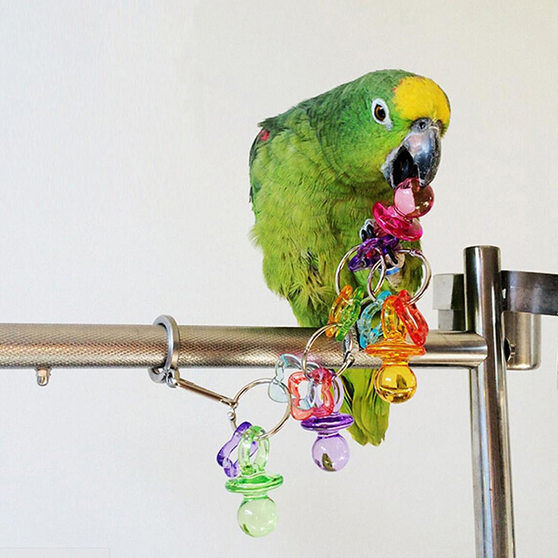 New Pet Parrot Bird BitesChew Acrylic Toys Swing Cage ...