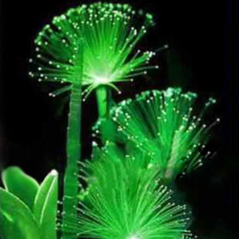 Rare 100 Pcs Emerald Fluorescent Flower Seeds Night Light