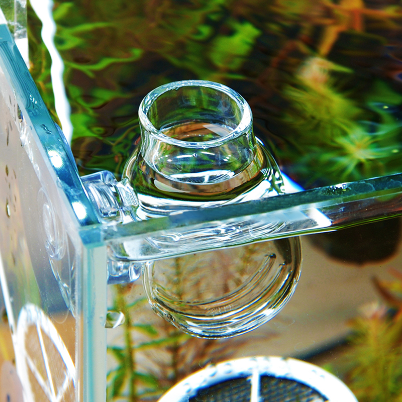 Clear glass bubble crystal shrimp fish bowl feeding cup for Fish bowl cups