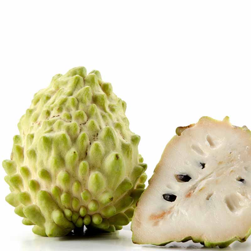 guanabana fruit for sale fruit loops studio