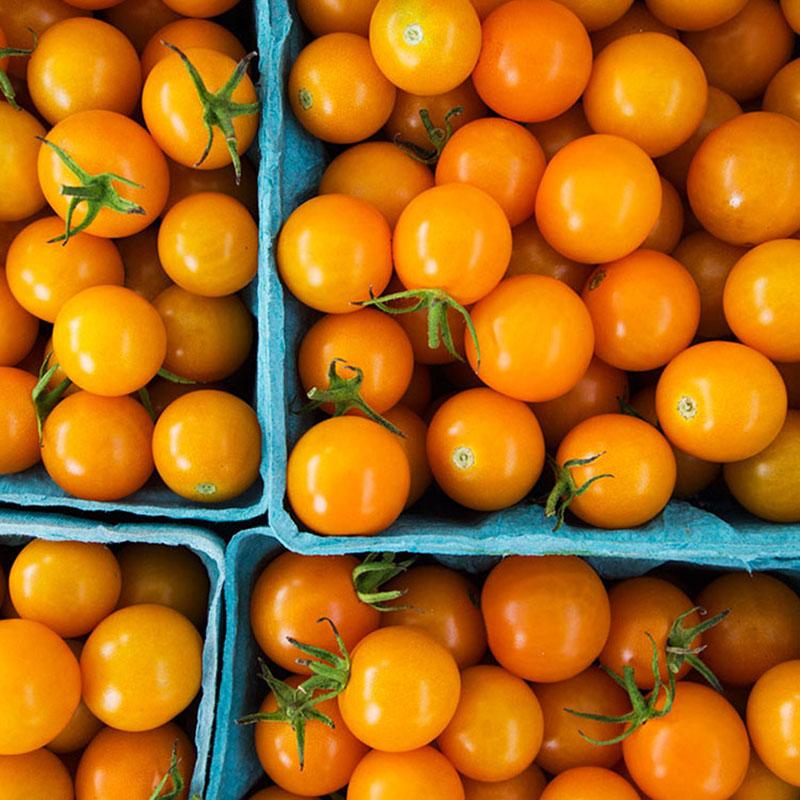Sweet Yellow cherry tomatoes Organic Vitamin Yellow Pear ...