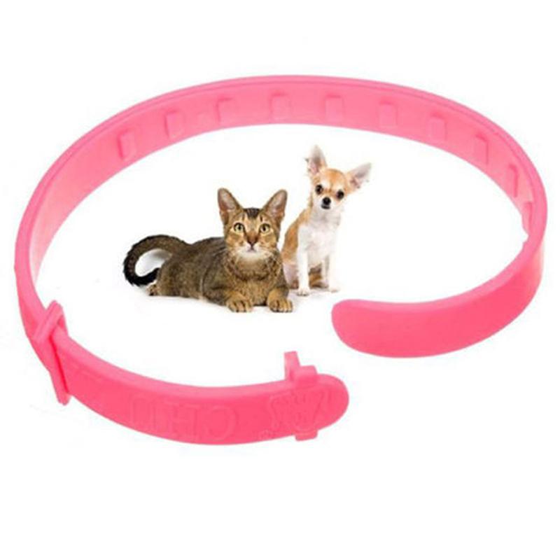 1pcs collier anti puces pour chat et chien collier anti puces contre les puces ebay. Black Bedroom Furniture Sets. Home Design Ideas