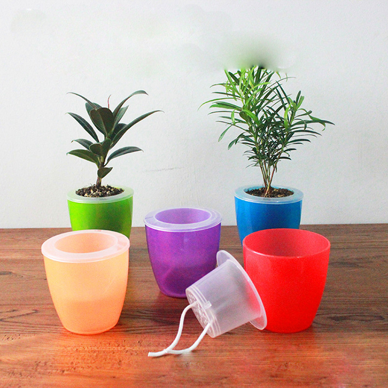 cute transparent self watering planter flower pot for home. Black Bedroom Furniture Sets. Home Design Ideas