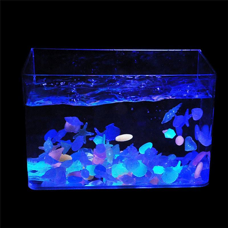 10pcs glow in the dark stone conch luminous sea shells for Glow in the dark fish tank
