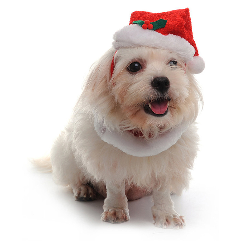 New puppy dog cat santa hat collar cotton set pets