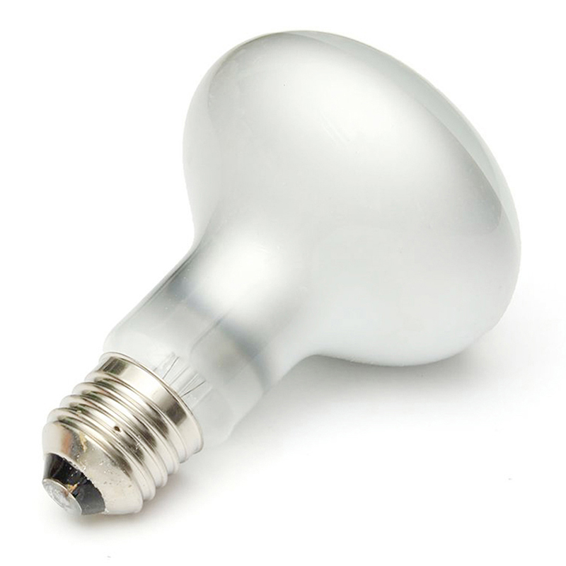 heat lamp night light bulb for pet snake lizard frog turtle reptile 25. Black Bedroom Furniture Sets. Home Design Ideas