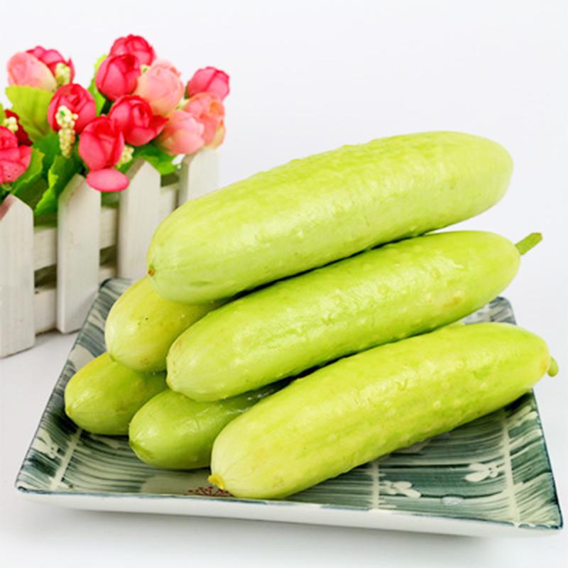 100stk Samen Weiße Gurke Weißer Engel Rarität Gurkensamen Gemüsesamen Pflanze~