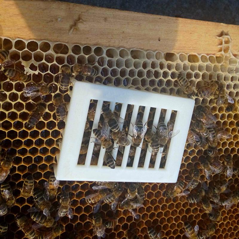 10x Kunststoff Bienenkönigin Bee Beekeeping Catcher Käfig Imker Imkerei Gelb