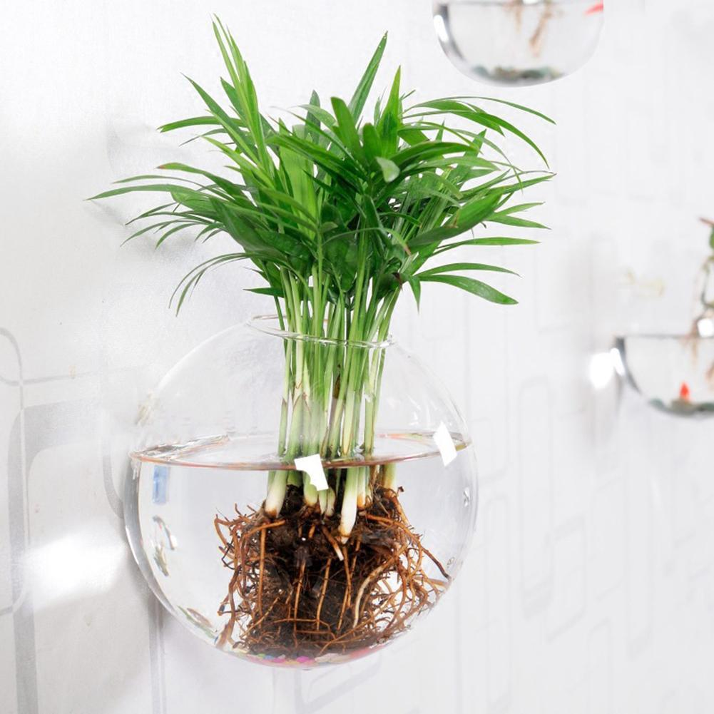 irregular wall hanging glass planter air plant terrarium. Black Bedroom Furniture Sets. Home Design Ideas