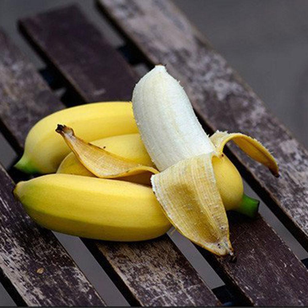 100 Stücke Bananenbaum Samen Schöne Samen Gartenpflanzen Große Zierpflanzen