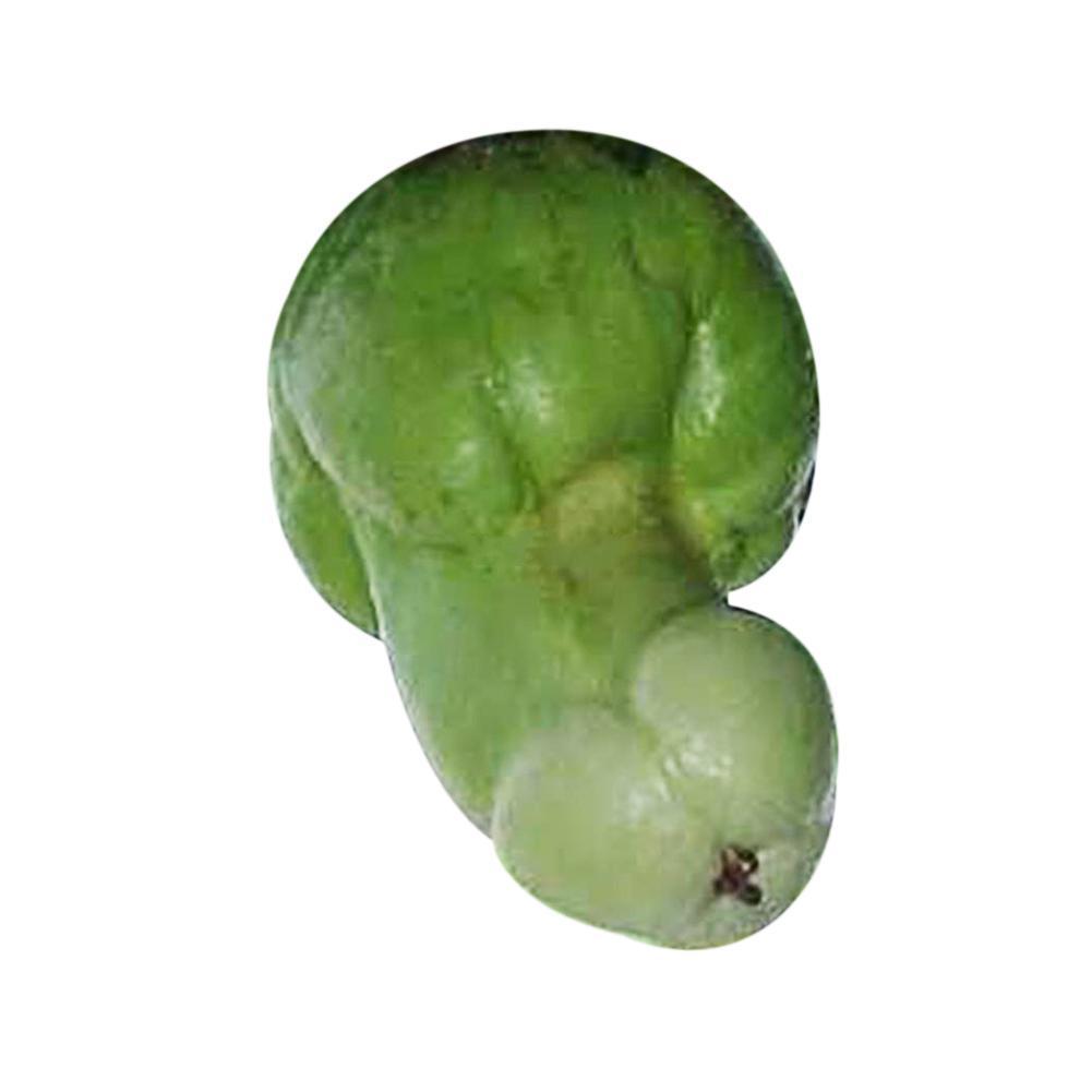 30stk//Bag Kürbiskerne Seltene Melonen Bio Gemüsesamen Hausgarten Samen Neu