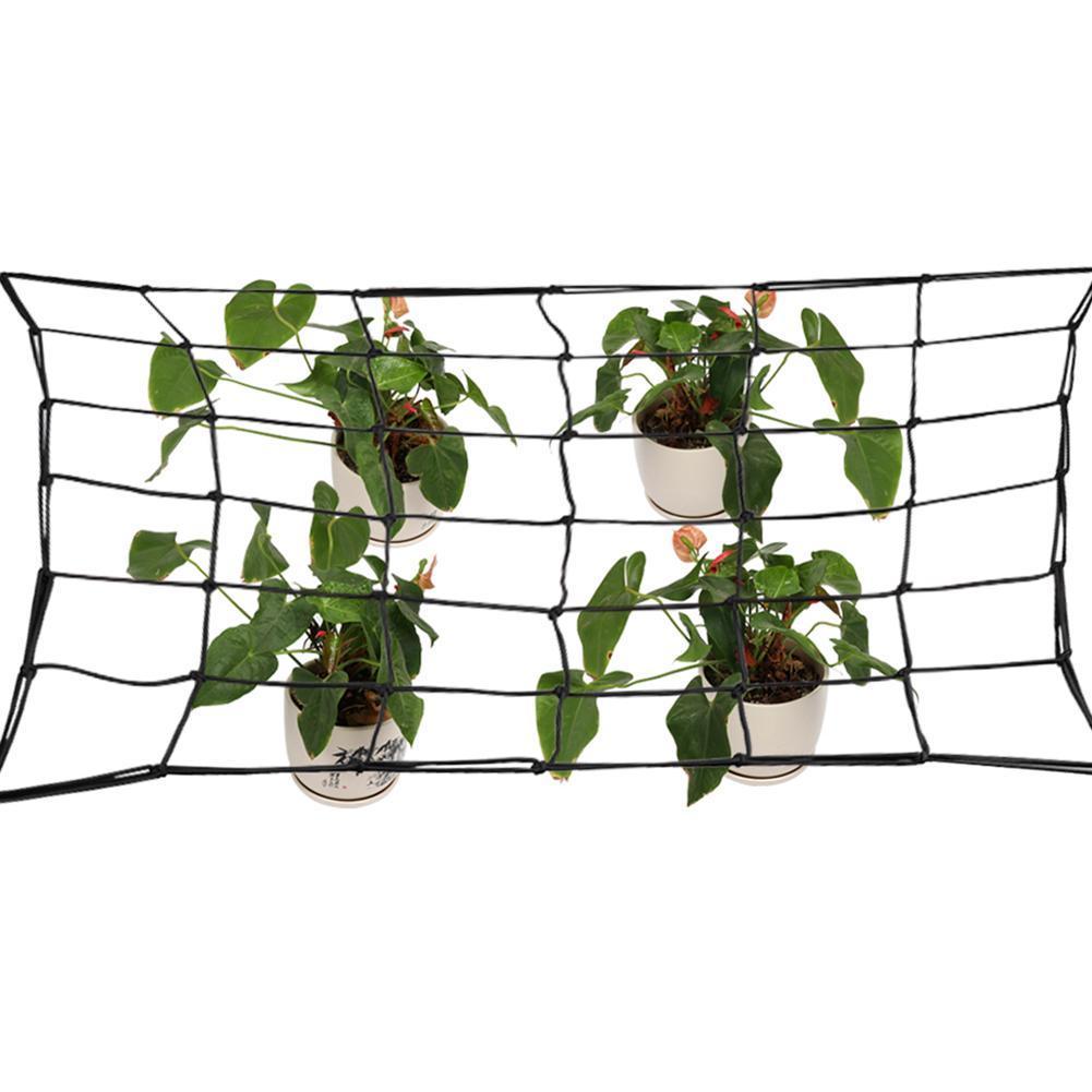 80cmx80cm 36 Löcher Scrog Net Mesh wachsen Zelt Hydroponics Indoor Plant 20 G7X6