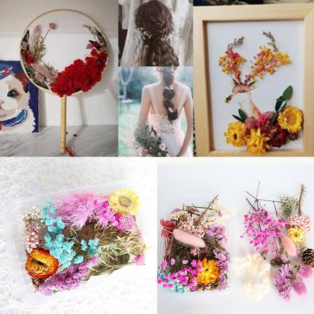 1Box Dried Flowers For Art Craft Epoxy Resin Candle Wedding GiftS Decor LZ01